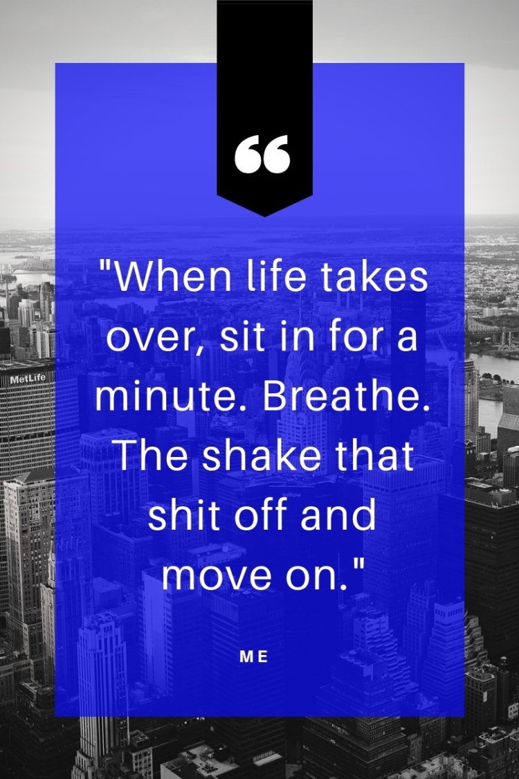 When life takes over, sit in for a minute. Breathe. The shake that shit off and move on.